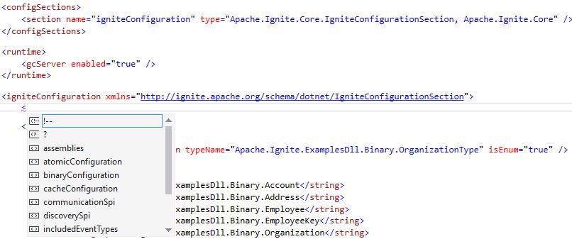 IgniteConfigurationSection IntelliSense